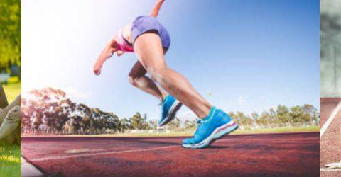 sport performance course
